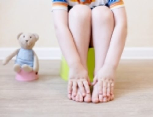 Potty Training 101: How to Get Your Toddler to Go, Like a Champ
